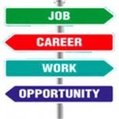 Job / Career (13)